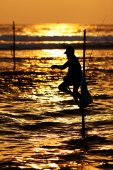 Silhouettes of the traditional stilt fishermen at sunset near Ga — Stock Photo