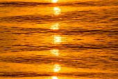 Gold reflective water surface of sunset on the lake. — Foto de Stock