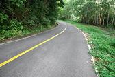 Empty road. — Stock Photo