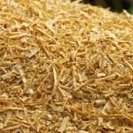 Wood Sawdust — Stock Photo #60829555