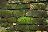 Old stone brick wall with moss — Stock Photo