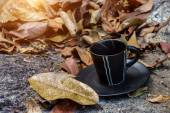 Coffee on the dry leaves. — Stock Photo