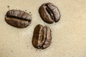 Coffee beans in the morning coffee time. — Stock Photo