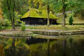 Wooden house with moss on roof — Stok fotoğraf