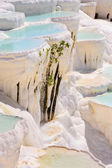 Travertine pools and terraces in Pamukkale, Turkey — Stock Photo