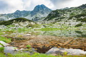Mountain lake in Retezat, Romania, Europe — Stock Photo