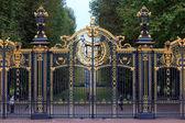Od vstupní brány v Buckinghamském paláci — Stock fotografie