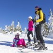 Family on the ski slope — Stock Photo #65578705