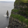 Cliffs of Moher landscape, Ireland — Stock Photo #54055825