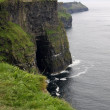 Cliffs of Moher landscape, Ireland — Stock Photo #54055953