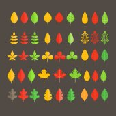 Different leaf collection isolated on white — Vector de stock