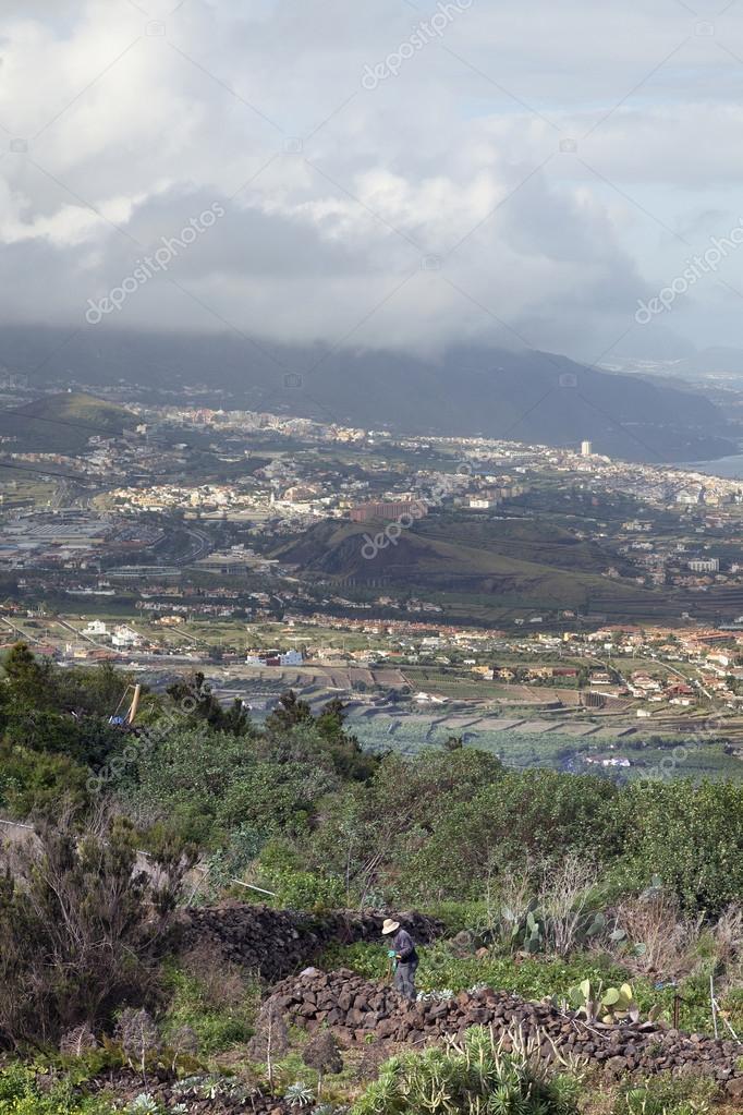 Uitzicht over puerto de la cruz op tenerife met tuinman redactionele stockfoto 101916778 - Uitzicht op de tuinman ...
