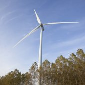 Wind turbine above trees in holland — Foto Stock