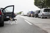 Traffic jam on motorway in germany — Stock Photo