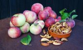 Apples fresh and dried — Stockfoto