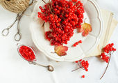 Healthy viburnum jam — Stock Photo