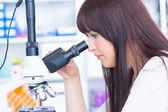 Microbiology laboratory — Stock Photo