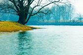 Nevoeiro no rio no outono — Fotografia Stock