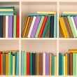 Bookcase — Stock Photo #54896323