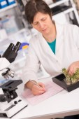 Woman studies plants — Stock Photo
