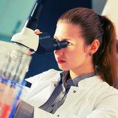 Científico utilizando un microscopio — Foto de Stock