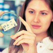 Girl in the laboratory of food quality tests cheese — Stock Photo