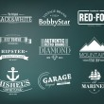 Retro Logotypes set — Stock Vector #63673103