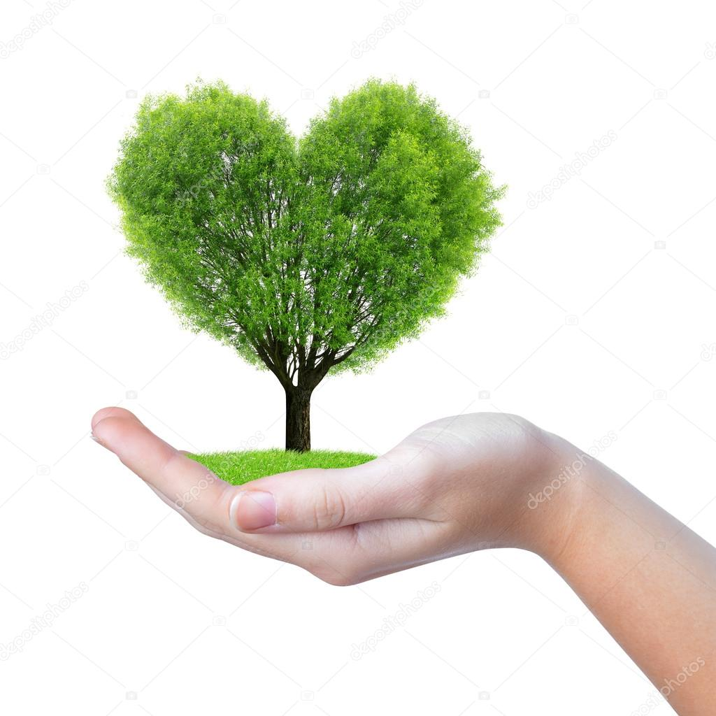 Growing Tree In The Shape Heart In Hand Stock Photo
