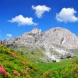 Dolomite peaks, Rosengarten — Stock Photo #52641823
