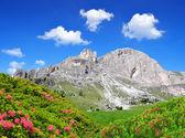 Dolomite peaks, Rosengarten — Stock Photo