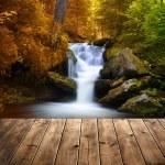 Waterfall — Stock Photo #53083481