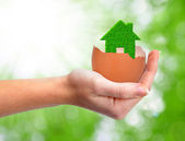 Green house in eggshell — Stock Photo