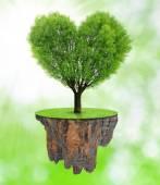 Tree in the shape heart — Stock Photo