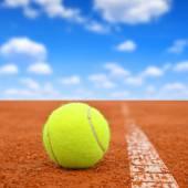 теннисный мяч — Стоковое фото