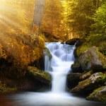 Waterfall — Stock Photo #53896275
