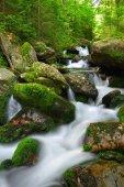 Mountain creek — Stockfoto