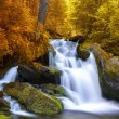 Waterfall — Stock Photo #55030943