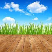 Dewy green grass with wooden planks — Stock Photo