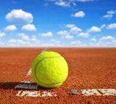 Palla da tennis — Foto Stock