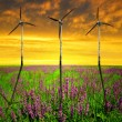 Spring meadow with wind turbines — Stock Photo #57056301
