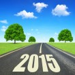 Forward to the New Year 2015 — Stock Photo #58344555