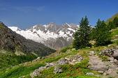 Alpes suisses — Photo