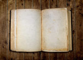 Open old blank book — Stock Photo