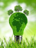 草のエコ電球 — ストック写真
