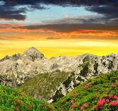 Triglav National Park at sunset — Stock Photo