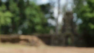 Angkor wat slow focus gate — Stock Video