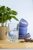 Blue coffee cups, coffee tree and fried coffee grains — Stock Photo