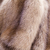 Texture of fur of a mink of color pastel — Stock Photo