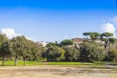 Rome, trees in public park — Stock Photo