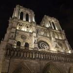 Paris, France, on May 1, 2013. Notre Dame de Paris in evening illumination — Stock Photo #59681237